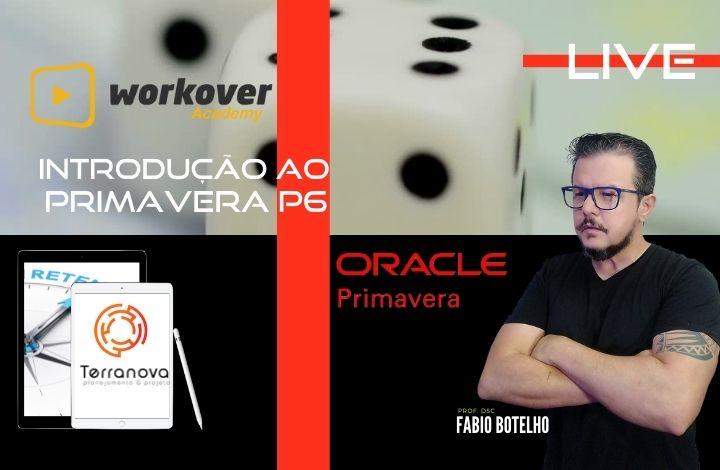 Introdução ao Oracle  Primavera P6
