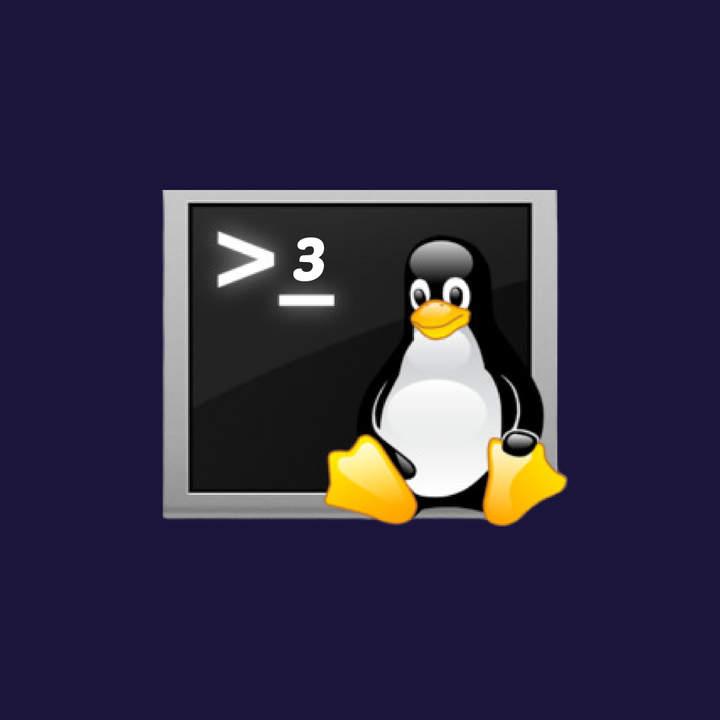 Shell Script profissional: Do básico ao avançado - Módulo 3