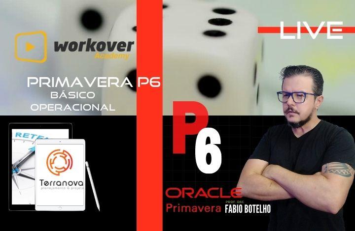 Oracle Primavera P6 Básico